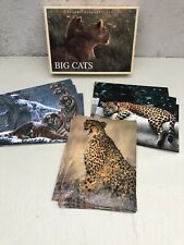 National Geographic Big Cats 10 Blank Greeting Note Cards & Envelopes Tigers