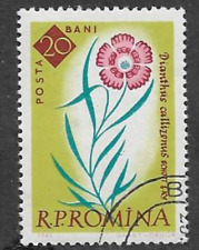 ROMANIA POSTAL ISSUE -1961 USED COMMEMORATIVE STAMP - FLOWERS - DIANTHUS