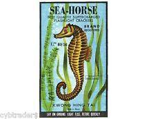 Firecracker Sea Horse Image Refrigerator / Tool Box Magnet Man Cave