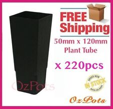 50mm Forestry Plant Tube Pot Square x 220pcs - Propagation, Seedling, Cuttings