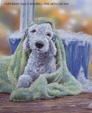 More details for paul doyle new bedlington terrier limited edition print 'bedlington bathtime'