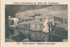 10. Ours blanc Polaire Ursus maritimus Polar bear IMAGE CARD BON POINT 30s