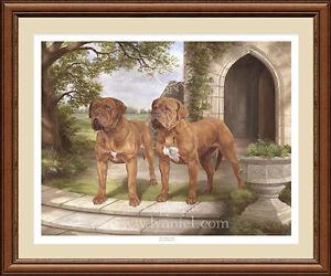 DOGUE DE BORDEAUX limited edition fine art dog print 'Standing Proud'