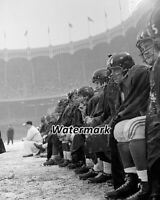 NFL 1958 New York Giants on the Bench Yankee Stadium 8 X 10 Photo Pictures