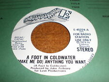 A Foot In Coldwater 45 Anything You Want PROMO ELEKTRA
