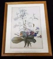 "Pierre Joseph Redoute Print A Bouquet of Flowers, Framed 15""×12"""