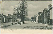 KATE WEARIE'S TREE, LINLITHGOW - West Lothian Postcard (P2082)