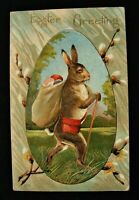 Standing~Bunny Rabbit ~ Sack of Eggs~Pussy Willow Flowers Easter Postcard-p624