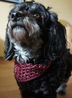 Hundehalstuch in Farbverlaufswolle Rottöne Halsumfang bis 35cm
