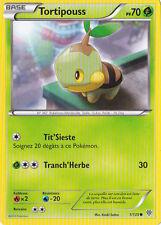 Tortipouss -N&B:Tempête Plasma-1/135-Carte Pokemon Neuve Française