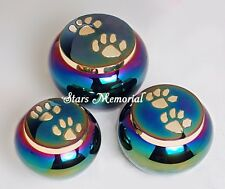 Odyssey Rainbow with Golden Paw Pet Urn ~ Funeral urn,Small ~~ Free Shipping