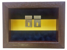 Small Princess of Wales Royal Regiment Miniatures Medal Display Case
