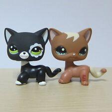 2X  Littlest Pet Shop LPS Toy #1170 #2249 Brown+Black Short Hair Cat