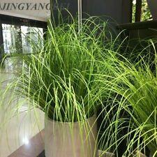 60CM Artificial Onion Grass Leaf Simulation Plant Silk Flower Home Decor US SHIP