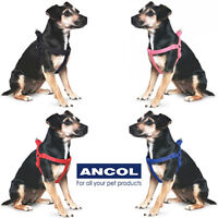 Ancol Reflective Nylon Padded Exercise Dog Harness Puppy Black Red Pink Blue