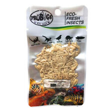 Probugs Riceworms insect feeders for Betta, Angels, Discus, Tropical Fish