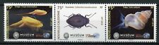 New Caledonia 2018 MNH Biodiversity Natl History Museum 3v Strip Beetles Stamps