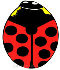 """Ladybug Rug Red Color Lady Bug Insect Kid's Playmat Size 35"""" x 39"""" New"""