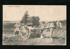 Somerset  social history TURFING Hiorse and Cart 1906 PPC corner crease