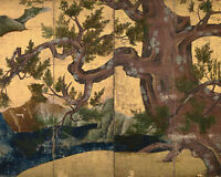 Ancient Japanese Cypress Tree Folding Fan Painting 8x10 Real Canvas Art Print