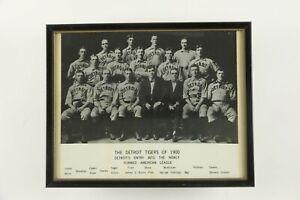 1900 Detroit Tigers Team Framed Baseball Photo Print