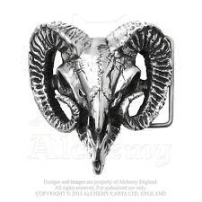 Alchemy - Béliers Crâne - ETAIN boucle ceinture