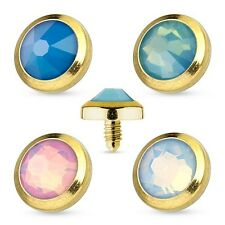 New Gold Plated over Surgical Steel Opalite Dermal Anchor Head 3mm 4mm 5mm