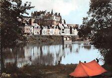 BR52440 Le chateau de l e Ile d Or Amboise       France