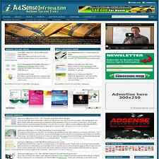 Established 'GOOGLE ADSENSE' Affiliate Website Turnkey Business (FREE HOSTING)