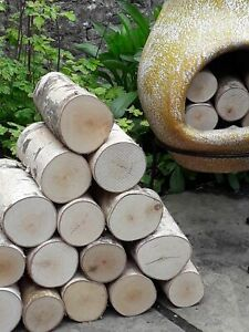 Full Round Log Bundle - 20cm Long Fine Sawn One End Kiln Dried Birch