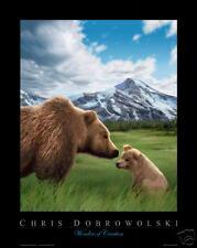 NEW! Grizzly Bear 16x20 Art Print Poster by Dobrowolski