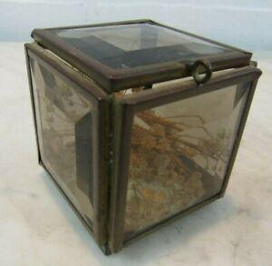 Vintage Bohemian Glass And Beveled Brass Small  Box Jewelry Trinket Terrarium