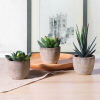 3pcs Mini Plant Pots Flower Artificial Succulent Plants Ceramic Flower Pot Decor