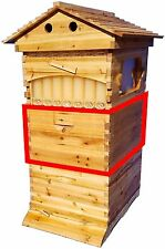 Auto Flow Frame Brood BOX ONLY No Combs for 10-Frame Langstroth Beehive