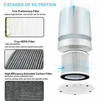 2 Air Purifier Odor Eliminator Carbon Filters to Replace Rowenta XD6060 XD6065