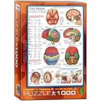 Eurographics the Brain Puzzle 1000 Pieces