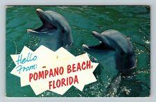 Pompano Beach Fl-Florida Hello, Smiling Porpoises, Chrome c1973 Postcard