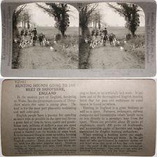 Keystone Stereoview Hunting Hounds, Shropshire, ENGLAND From RARE 1200 Card Set