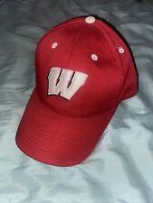 University Of Wisconsin Badgers SnapBack Hat