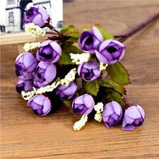 Samen für Bonsai Mini-Rose Miniatur Lila *ausgefallen & selten* 30 Stück