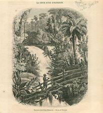 Waterfall Chute d'Eau d'Itamaraty Piabanha Bresil GRAVURE ANTIQUE OLD PRINT 1854