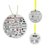 2020 A Year to Remember Christmas Pandemic Ornament 2020 Quarantine Ornament