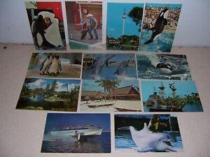 1960s-1970s SEA WORLD AMUSEMENT PARK VTG POSTCARD LOT
