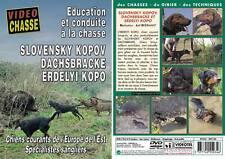 Slovensky kopov dachsbracke erdelyi kopo  - Chiens de chasse - Vidéo Chasse