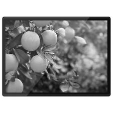 Plastic Placemat A3 BW - Tree Fruit Healthy  #38011