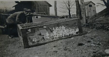 VINTAGE PHOTO ALBUM 1910S WOMEN ENJOYING NATURE AND FAMILY LIFE. BABY CHICKS