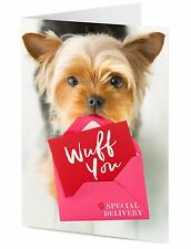 Yorkshire Terrier dog delivers special WUFF YOU love you Birthday Valentine card