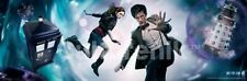 Doctor Who The Doctor and Amy in Vortex 11.75 x 36 Poster, Matt Smith New Rolled