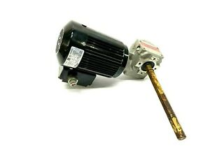 Bodine 42Y6BFPP Gear Motor 220-240V w/ Bosch 3842503067 Speed Reducer