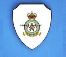 ROYAL AIR FORCE 8 FORCE PROTECTION WING WALL SHIELD (FULL COLOUR)